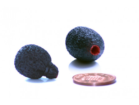 Піна Mini Lavalier з неопреновим покриттям
